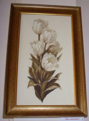 Білі тюльпани.